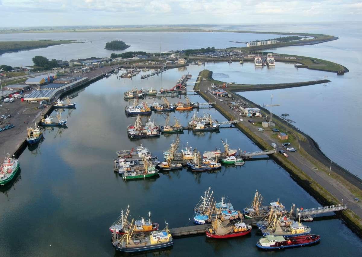 Lauwersoog - Hafen bei Het Hogeland (Lauwersoog)